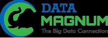 TekYogi LLC dba Data-Magnum