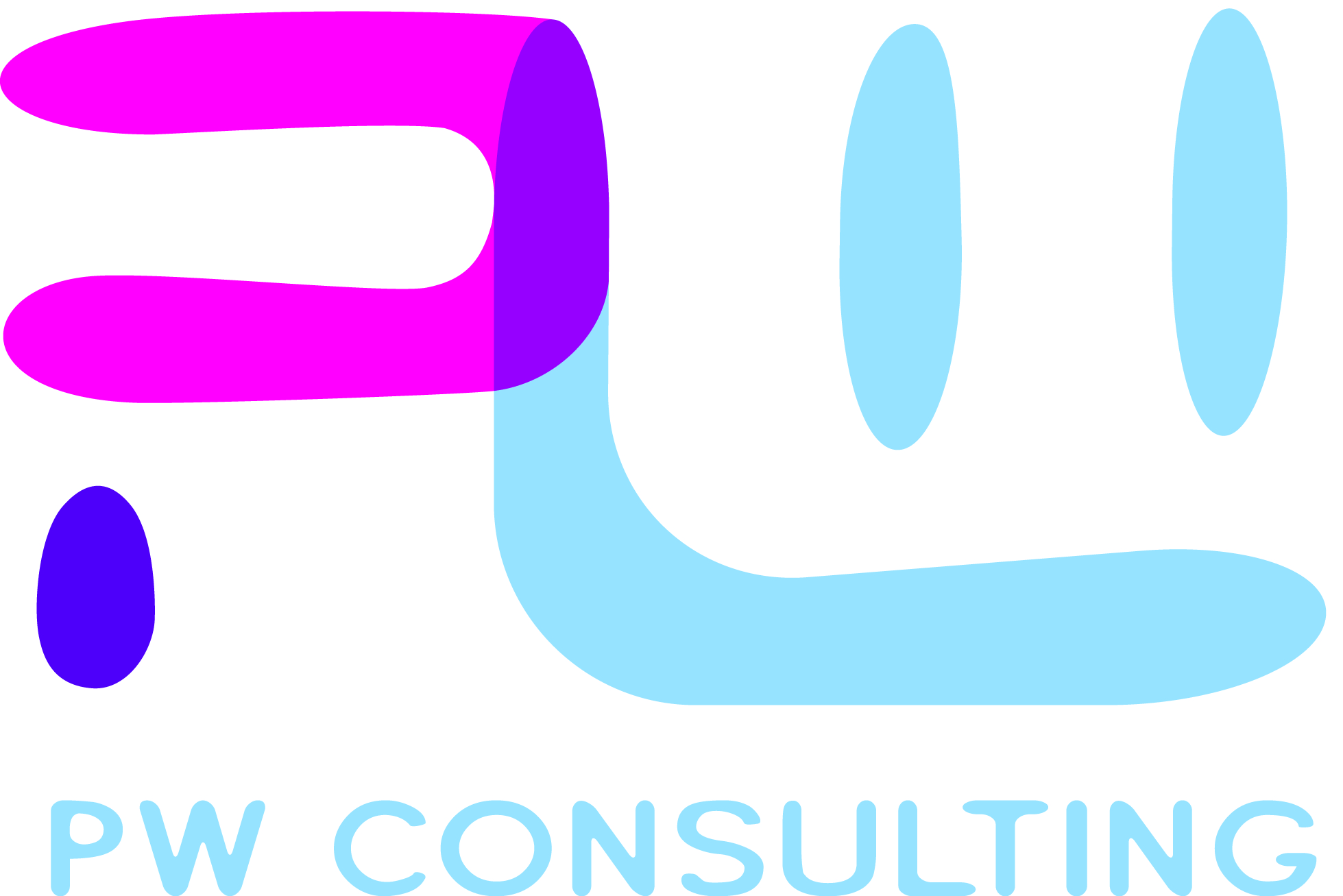 PW Consulting